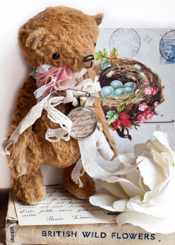 Bear1_571x800